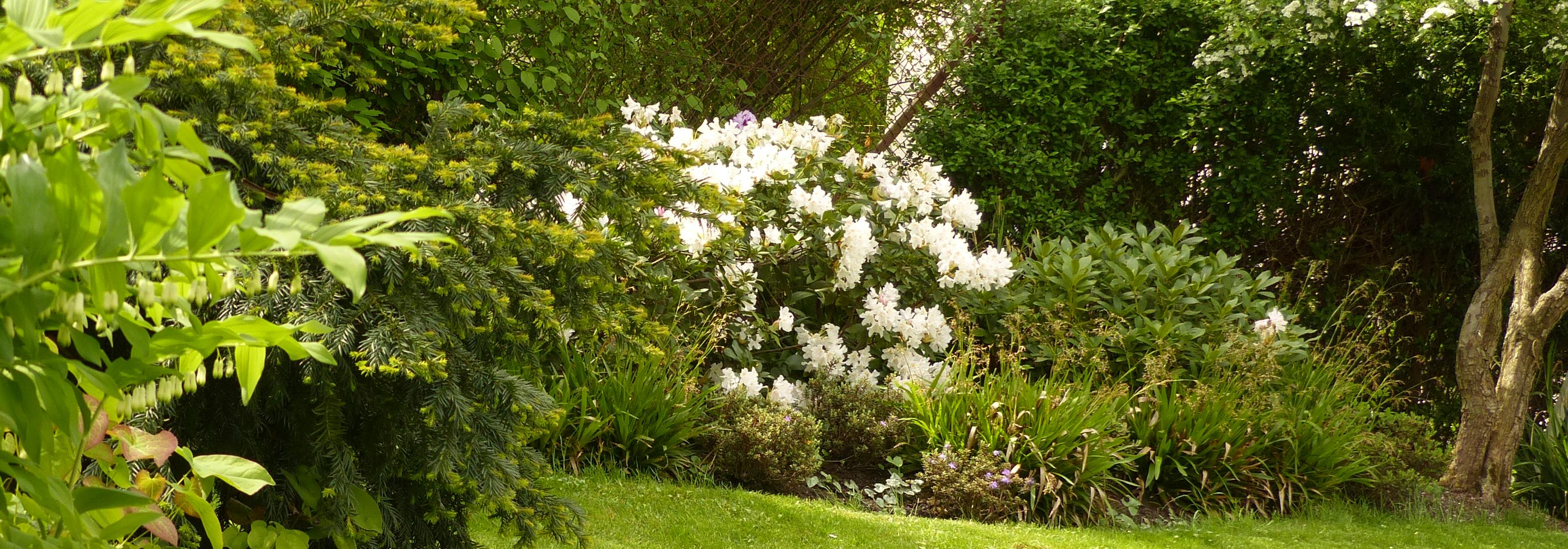 Garten Und Landschaftsbau Gartenbau Bohringer